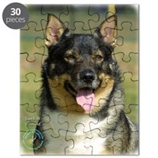 Swedish Vallhund 9K003D-10 Puzzle