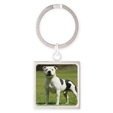 Staffordshire Bull Terrier 9F46D-1 Square Keychain