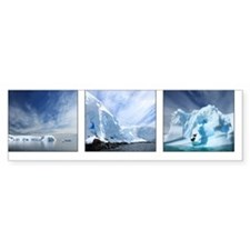 antarctica blues Bumper Sticker