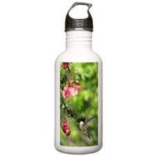 Hum2.41x4.42 Water Bottle
