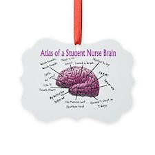 Atlas of Student nurse brain PINK Ornament