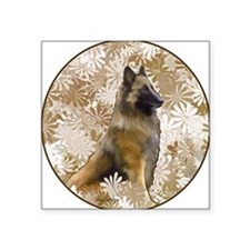 "Belgian Terv in the garden Square Sticker 3"" x 3"""