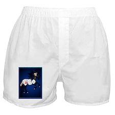 Appaloosa War Pony Poster P Boxer Shorts
