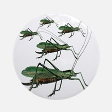 Five Green Grasshoppers Round Ornament