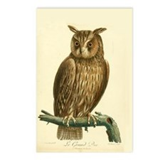 Grand Duc Owl Postcards (Package of 8)