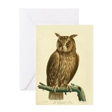 Grand Duc Owl Greeting Cards