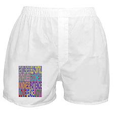 FruitsV2 Boxer Shorts