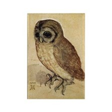The Little Owl by Durer Magnets