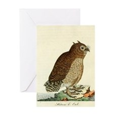 Hutum Owl by Latham Greeting Cards