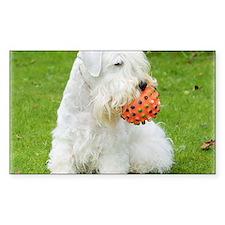 Sealyham Terrier 8M003D-12 Decal