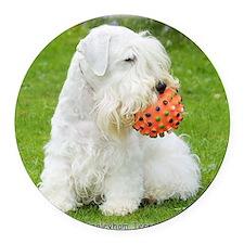 Sealyham Terrier 8M003D-12 Round Car Magnet