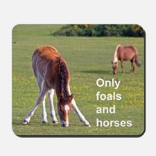 Only foals and horses Mousepad