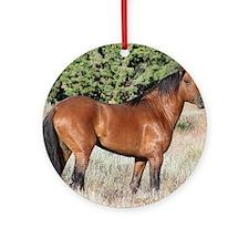 Kiger Stallion Round Ornament