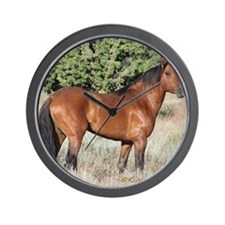 Kiger Stallion Wall Clock