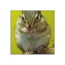 "Chipmk mouse Square Sticker 3"" x 3"""
