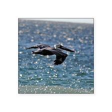 """pelican_box Square Sticker 3"""" x 3"""""""