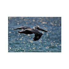 pelican_box Rectangle Magnet