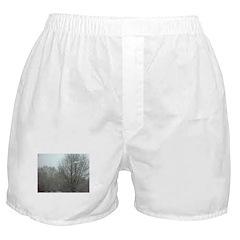 Snowy Trees Boxer Shorts
