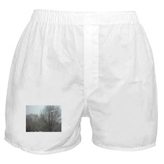 Snowy Trees Boxer Shorts
