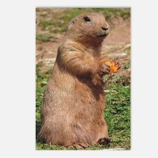 Prairie dog 9x12 Postcards (Package of 8)