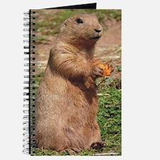 Prairie dog 9x12 Journal