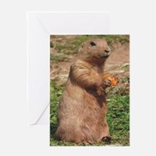Prairie dog 9x12 Greeting Card