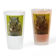 chipmunk squ Drinking Glass
