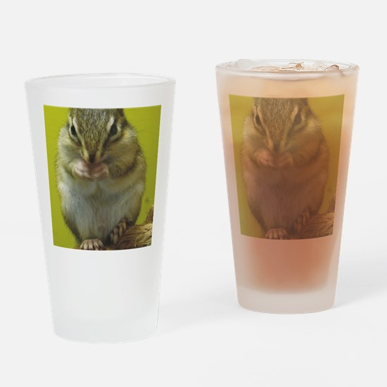 chipmunk ipad Drinking Glass