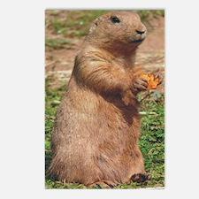 prairie dog ipad Postcards (Package of 8)