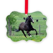 black_laptop Ornament