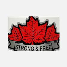 SAFE Logo 2010 v8 no CANADA Rectangle Magnet