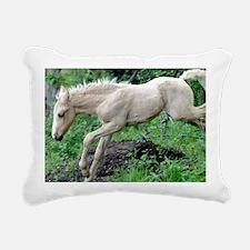 leaping_laptop Rectangular Canvas Pillow