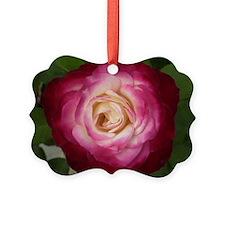 rose_laptop Ornament