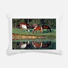 reflection_laptop Rectangular Canvas Pillow