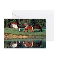 reflection_laptop Greeting Card