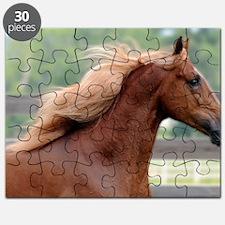 Skin 1 Puzzle