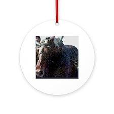 anohorse Round Ornament