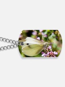 butterfly-butterfly-bush Dog Tags