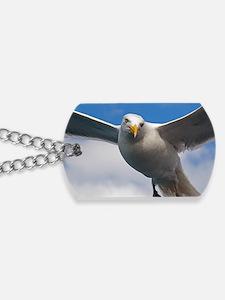 seagull-2 Dog Tags