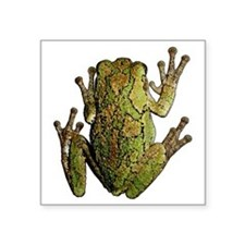 "FROG_CLEANoutline Square Sticker 3"" x 3"""