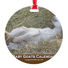 2012 I Love Baby Goats Calendar Ornament