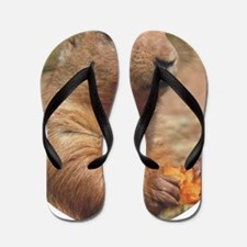 prairie dog rnd Flip Flops