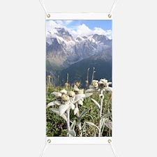 edelweiss mountains Banner