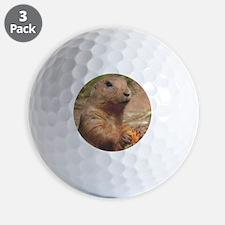 prairie dog rnd Golf Ball