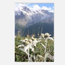 edelweiss mountains Postcards (Package of 8)