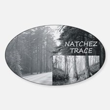 natcheztrace1 Sticker (Oval)
