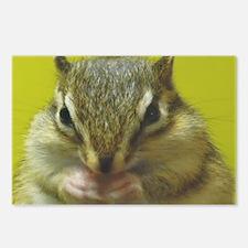 chipmunk larg Postcards (Package of 8)