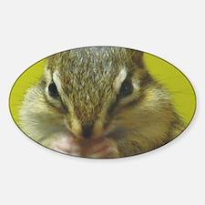 chipmunk larg Decal