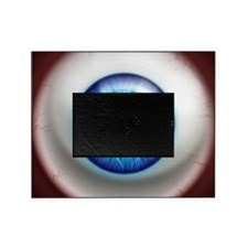 16x16_theeye_electric Picture Frame