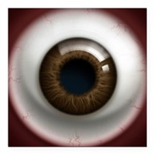 "16x16_theeye_browndark Square Car Magnet 3"" x 3"""